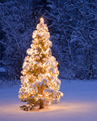 Love Your Neighbor Holiday Program